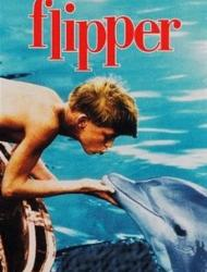 Flipper – 59