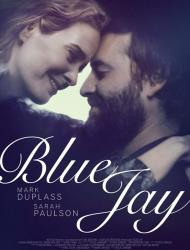 Blue Jay – Duble